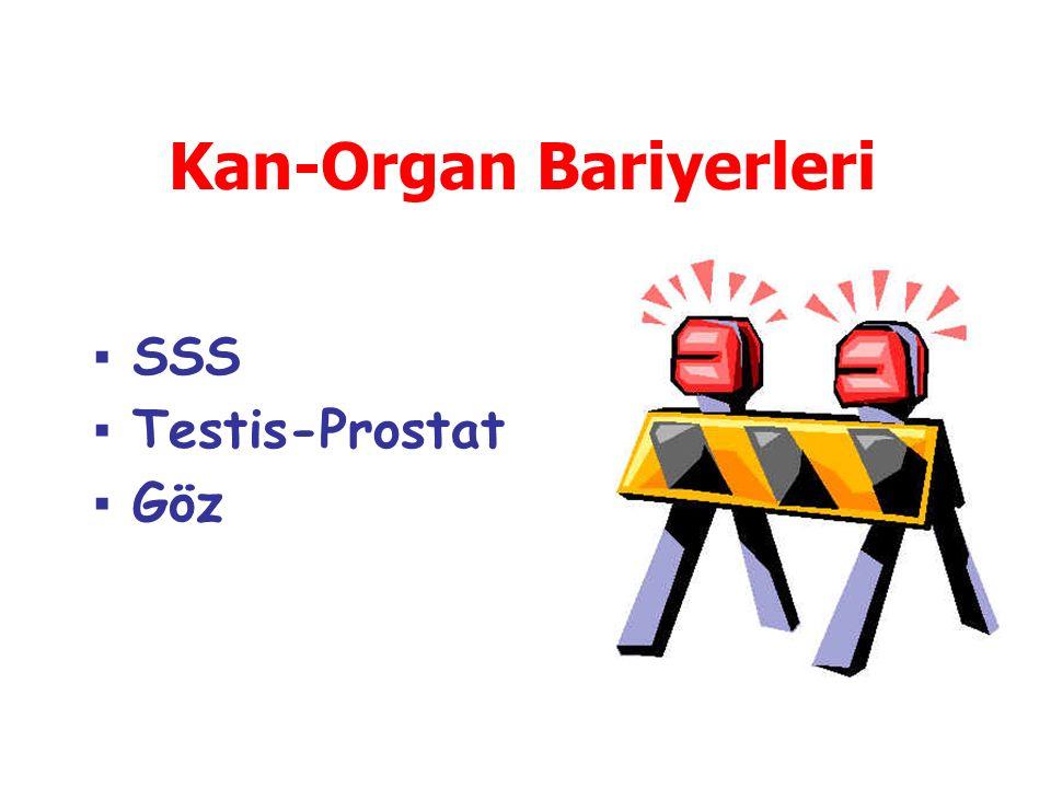 ▪SSS ▪Testis-Prostat ▪Göz Kan-Organ Bariyerleri