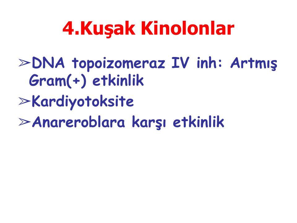 ➢ DNA topoizomeraz IV inh: Artmış Gram(+) etkinlik ➢ Kardiyotoksite ➢ Anareroblara karşı etkinlik