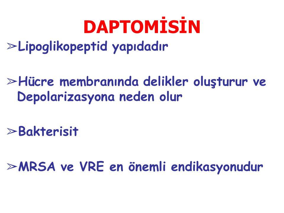 DAPTOMİSİN ➢ Lipoglikopeptid yapıdadır ➢ Hücre membranında delikler oluşturur ve Depolarizasyona neden olur ➢ Bakterisit ➢ MRSA ve VRE en önemli endikasyonudur