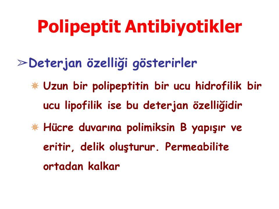 Polipeptit Antibiyotikler ➢ Deterjan özelliği gösterirler ✵ Uzun bir polipeptitin bir ucu hidrofilik bir ucu lipofilik ise bu deterjan özelliğidir ✵ Hücre duvarına polimiksin B yapışır ve eritir, delik oluşturur.