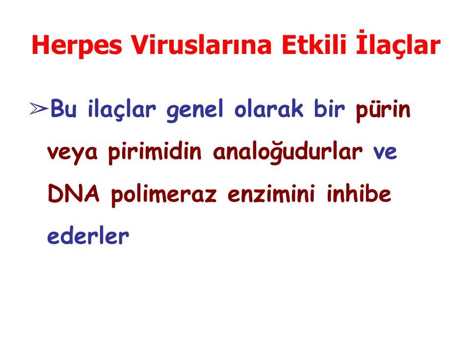 Herpes Viruslarına Etkili İlaçlar ➢ Bu ilaçlar genel olarak bir pürin veya pirimidin analoğudurlar ve DNA polimeraz enzimini inhibe ederler
