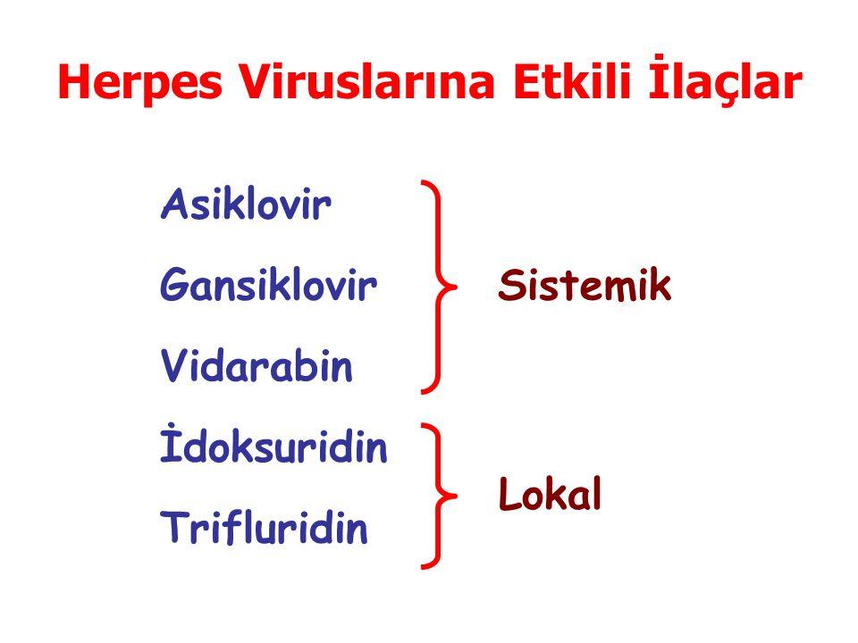 Herpes Viruslarına Etkili İlaçlar Asiklovir Gansiklovir Vidarabin İdoksuridin Trifluridin Sistemik Lokal
