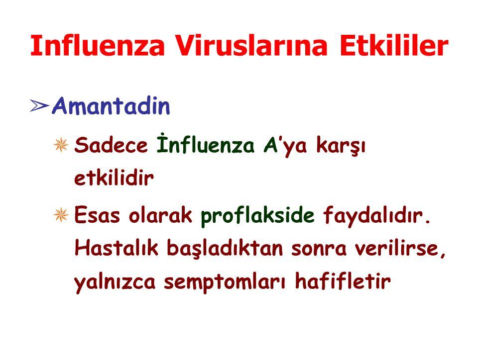 Influenza Viruslarına Etkililer ➢ Amantadin ✵ Sadece İnfluenza A'ya karşı etkilidir ✵ Esas olarak proflakside faydalıdır. Hastalık başladıktan sonra v