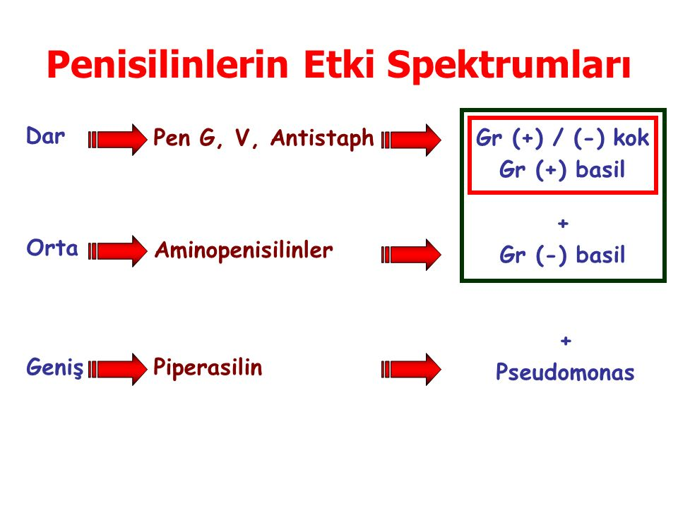 Penisilinlerin Etki Spektrumları Dar Orta Geniş Pen G, V, Antistaph Aminopenisilinler Piperasilin Gr (+) / (-) kok Gr (+) basil + Gr (-) basil + Pseud