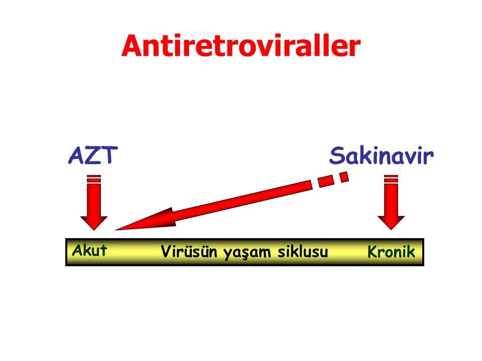 Antiretroviraller AZTSakinavir Virüsün yaşam siklusu Akut Kronik