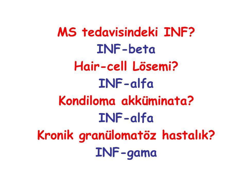 MS tedavisindeki INF? INF-beta Hair-cell Lösemi? INF-alfa Kondiloma akküminata? INF-alfa Kronik granülomatöz hastalık? INF-gama