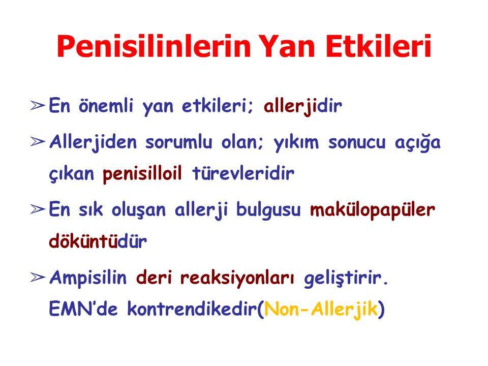 Penisilinlerin Yan Etkileri ➢ En önemli yan etkileri; allerjidir ➢ Allerjiden sorumlu olan; yıkım sonucu açığa çıkan penisilloil türevleridir ➢ En sık oluşan allerji bulgusu makülopapüler döküntüdür ➢ Ampisilin deri reaksiyonları geliştirir.