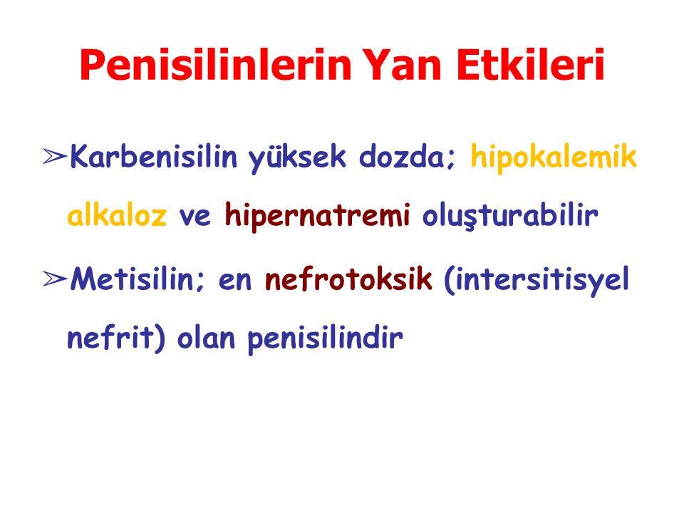 ➢ Karbenisilin yüksek dozda; hipokalemik alkaloz ve hipernatremi oluşturabilir ➢ Metisilin; en nefrotoksik (intersitisyel nefrit) olan penisilindir Pe