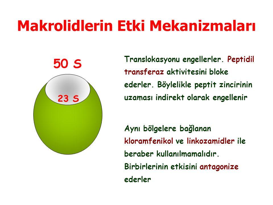 Makrolidlerin Etki Mekanizmaları 50 S 23 S Translokasyonu engellerler.