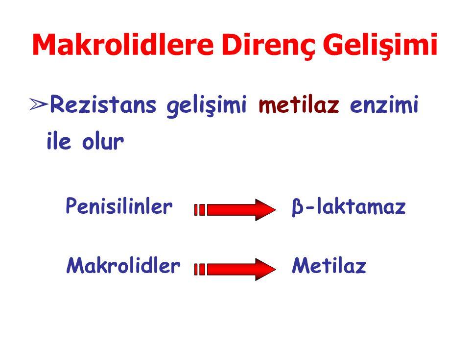 Makrolidlere Direnç Gelişimi ➢ Rezistans gelişimi metilaz enzimi ile olur Penisilinler Makrolidler β-laktamaz Metilaz