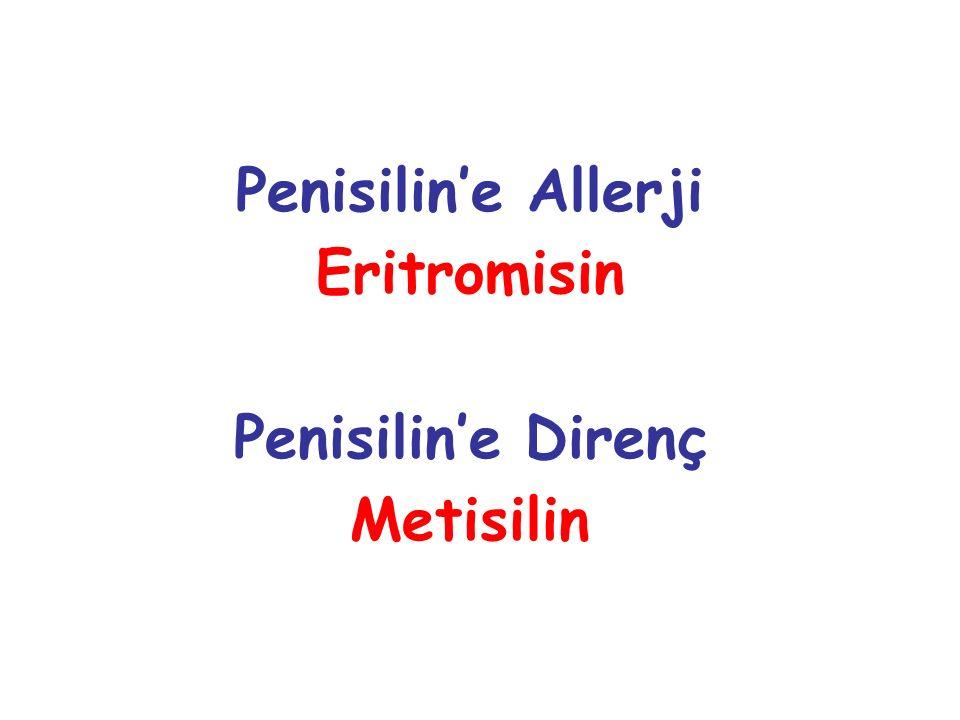 Penisilin'e Allerji Eritromisin Penisilin'e Direnç Metisilin