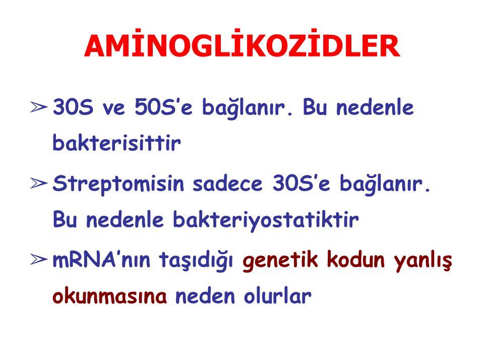 AMİNOGLİKOZİDLER ➢ 30S ve 50S'e bağlanır.