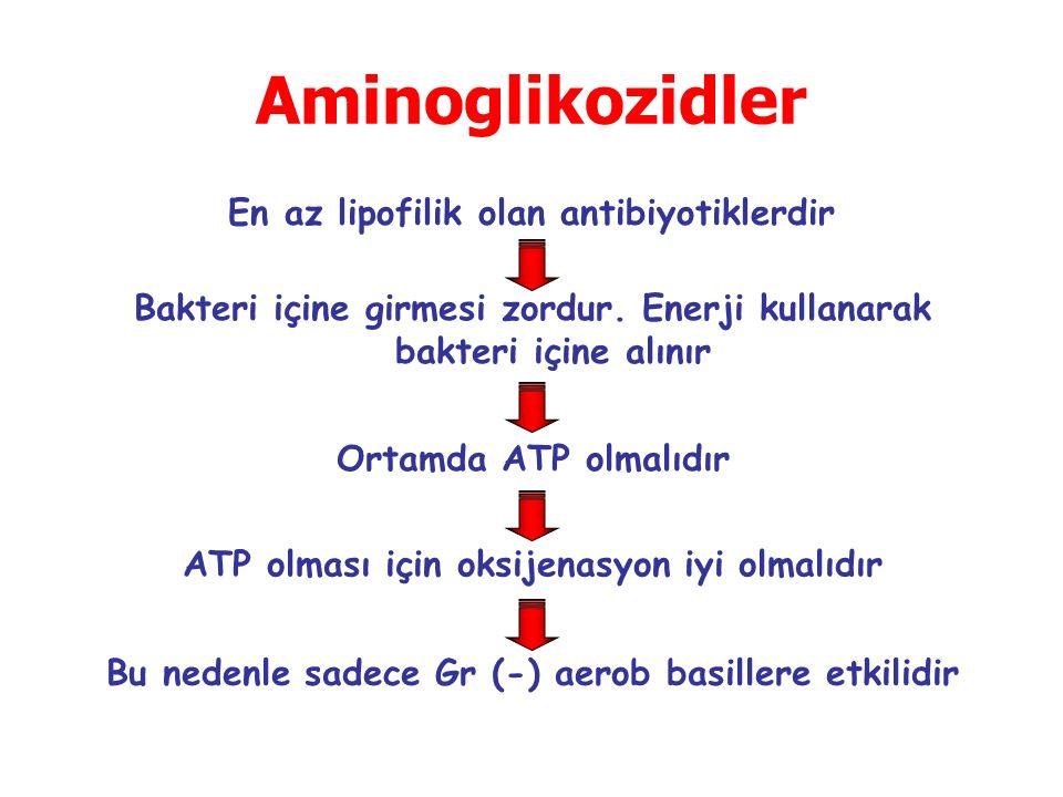 Aminoglikozidler En az lipofilik olan antibiyotiklerdir Bakteri içine girmesi zordur. Enerji kullanarak bakteri içine alınır Ortamda ATP olmalıdır ATP