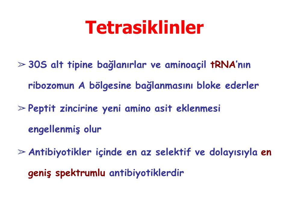 Tetrasiklinler ➢ 30S alt tipine bağlanırlar ve aminoaçil tRNA'nın ribozomun A bölgesine bağlanmasını bloke ederler ➢ Peptit zincirine yeni amino asit eklenmesi engellenmiş olur ➢ Antibiyotikler içinde en az selektif ve dolayısıyla en geniş spektrumlu antibiyotiklerdir