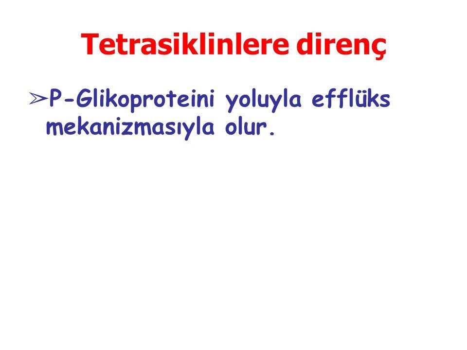 Tetrasiklinlere direnç ➢ P-Glikoproteini yoluyla efflüks mekanizmasıyla olur.