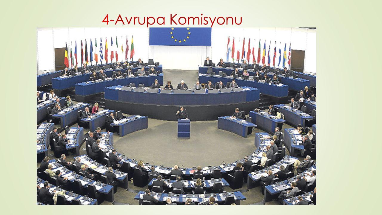 4-Avrupa Komisyonu