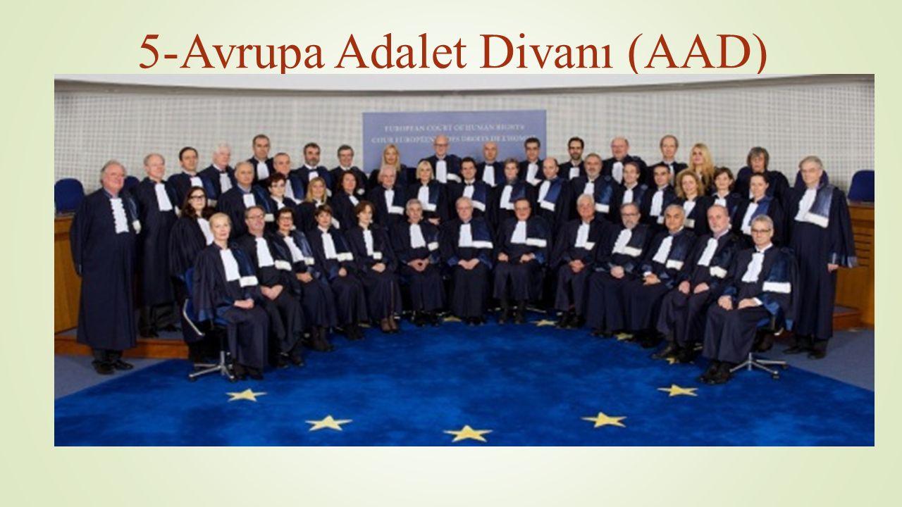 5-Avrupa Adalet Divanı (AAD)