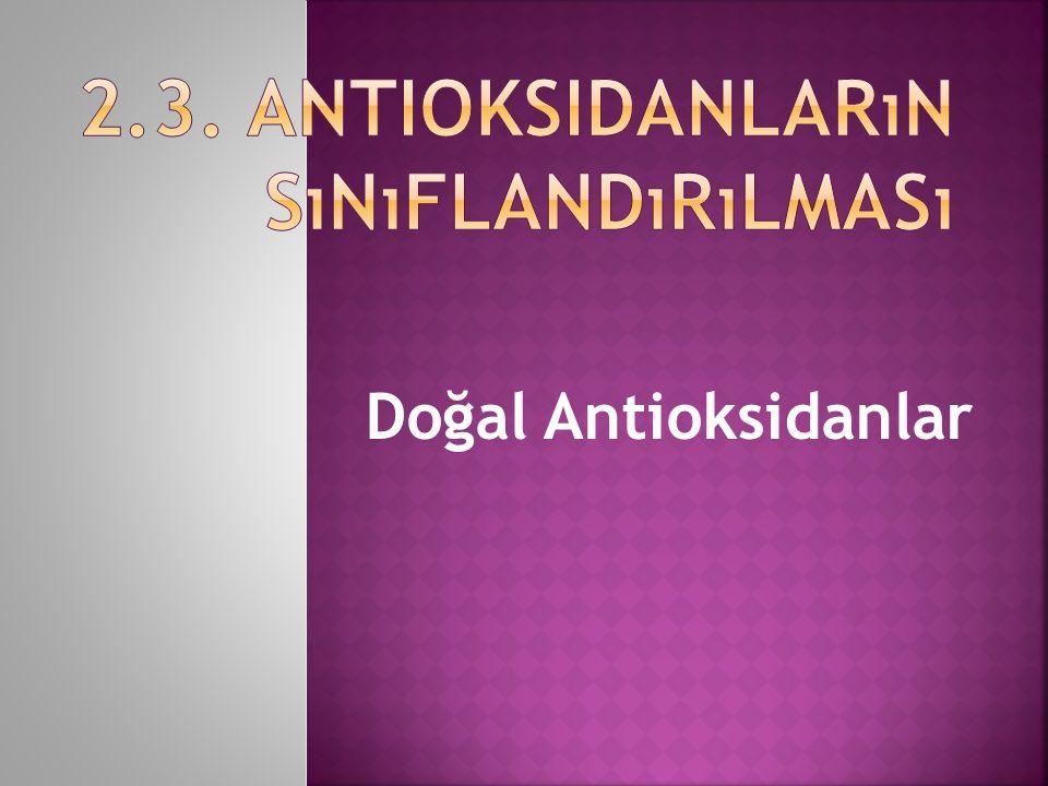 Doğal Antioksidanlar