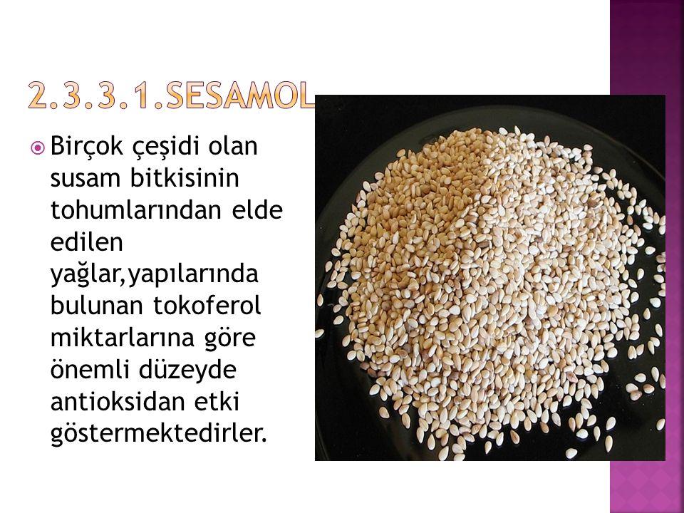  Birçok çeşidi olan susam bitkisinin tohumlarından elde edilen yağlar,yapılarında bulunan tokoferol miktarlarına göre önemli düzeyde antioksidan etki