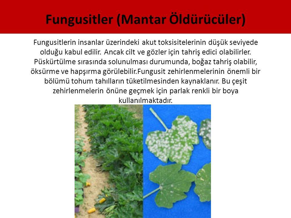 Fungusitlerin insanlar üzerindeki akut toksisitelerinin düşük seviyede olduğu kabul edilir. Ancak cilt ve gözler için tahriş edici olabilirler. Püskür
