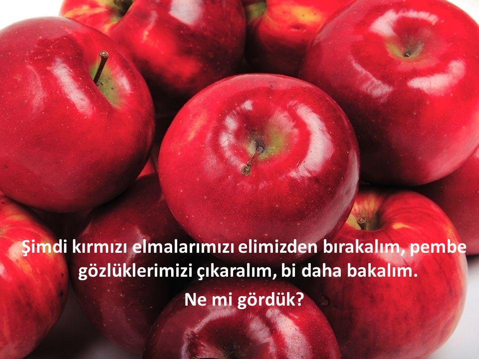 Şimdi kırmızı elmalarımızı elimizden bırakalım, pembe gözlüklerimizi çıkaralım, bi daha bakalım. Ne mi gördük?
