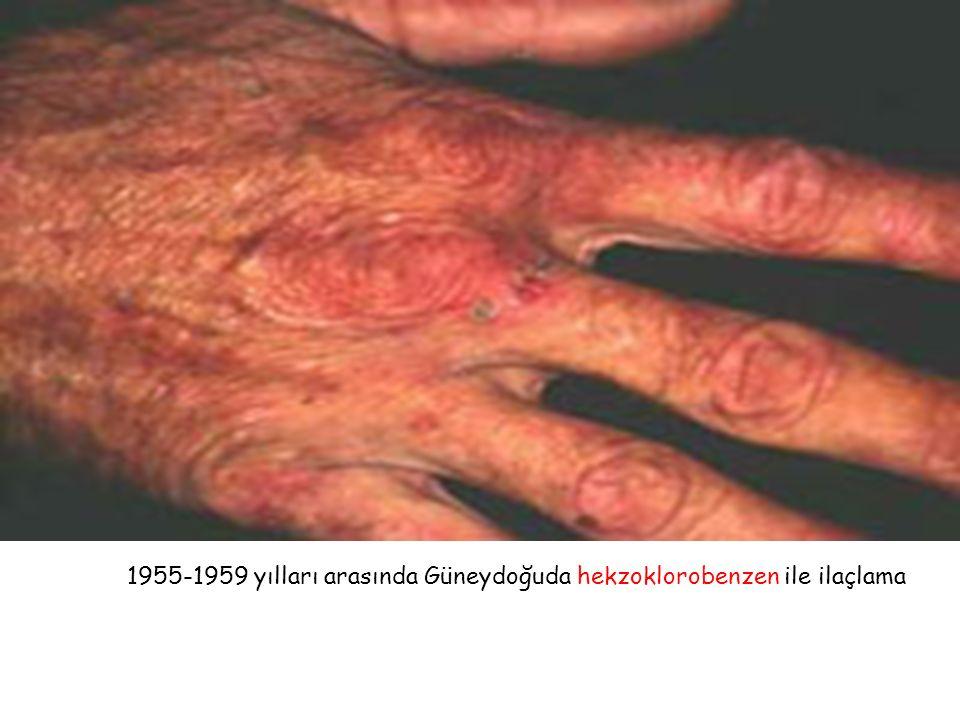 1955-1959 yılları arasında Güneydoğuda hekzoklorobenzen ile ilaçlama