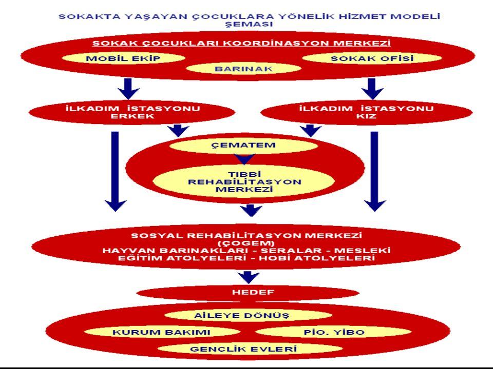 SAĞLIK BAKANLIĞI'NIN YÜKÜMLÜLÜKLERİ  Model çerçevesinde, Bakanlık bünyesinde iç organizasyona giderek bir komisyon oluşturacaktır.