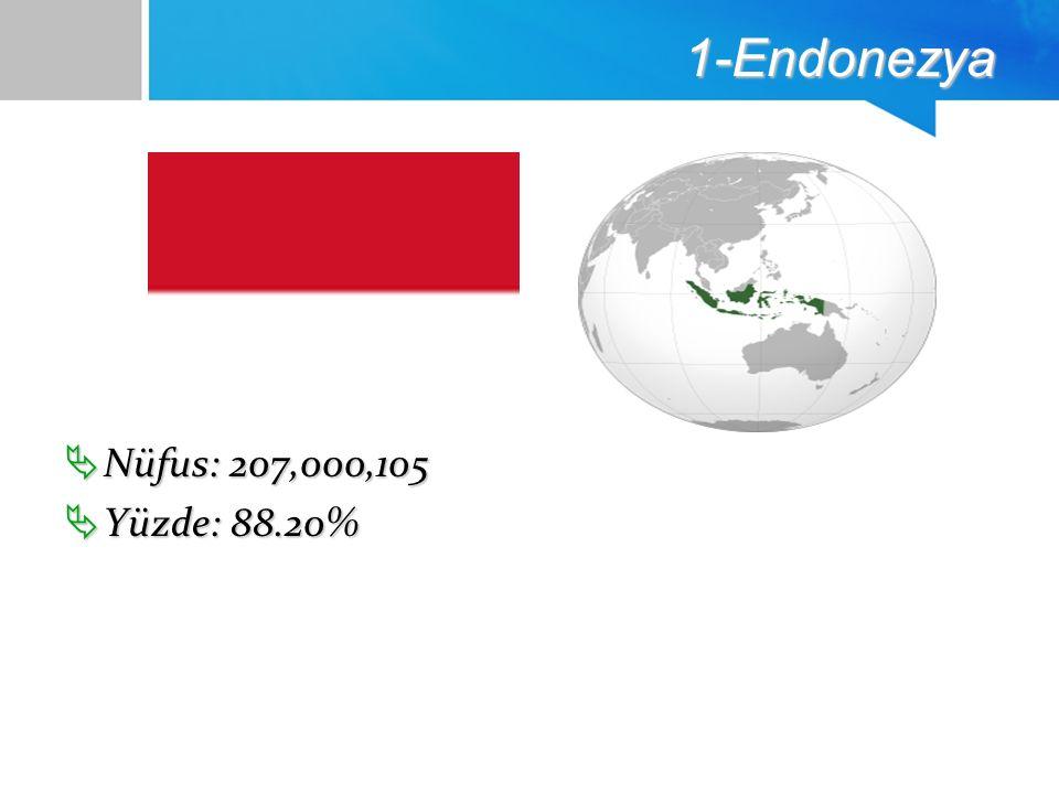 1-Endonezya  Nüfus: 207,000,105  Yüzde: 88.20%