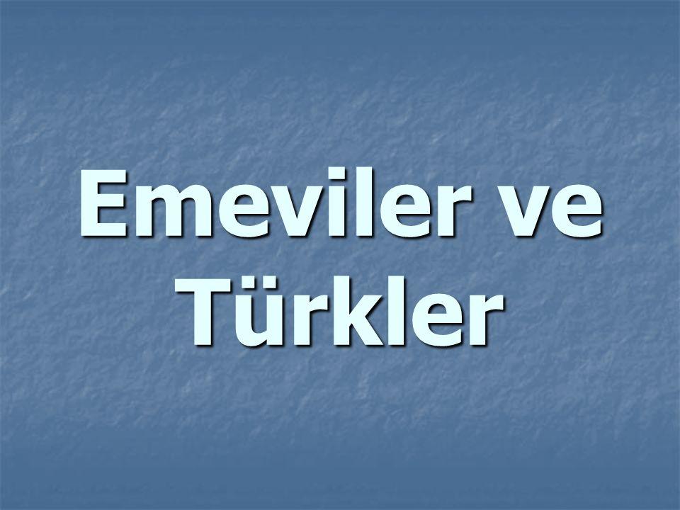 Emeviler ve Türkler