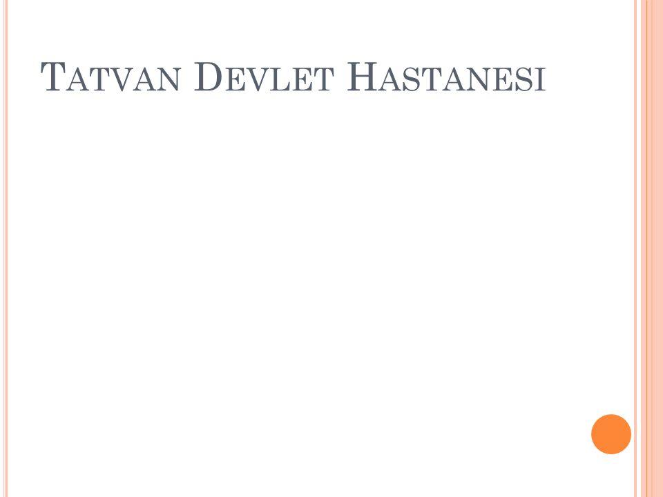T ATVAN D EVLET H ASTANESI