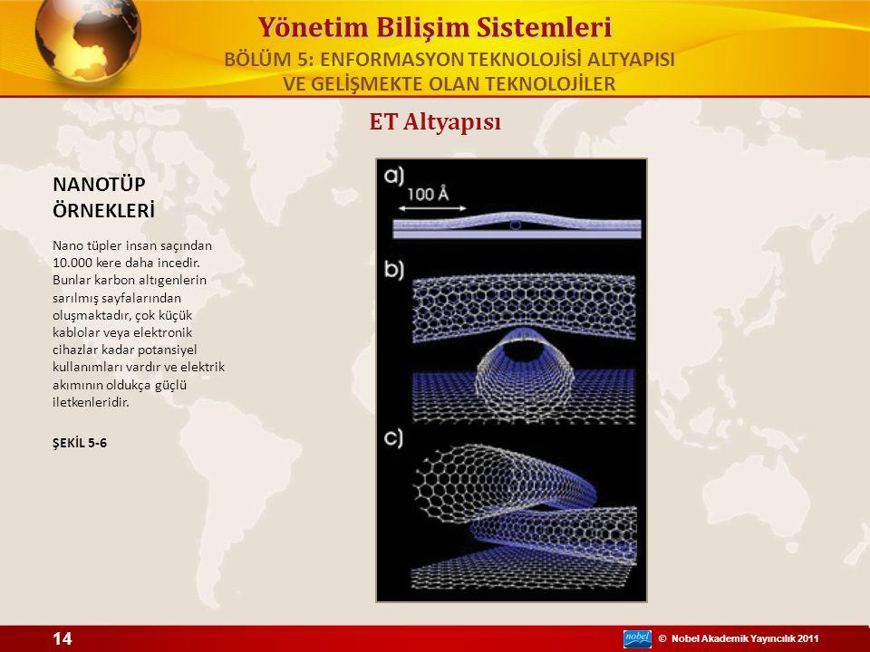 © Nobel Akademik Yayıncılık 2011 Yönetim Bilişim Sistemleri ET Altyapısı NANOTÜP ÖRNEKLERİ Nano tüpler insan saçından 10.000 kere daha incedir. Bunlar