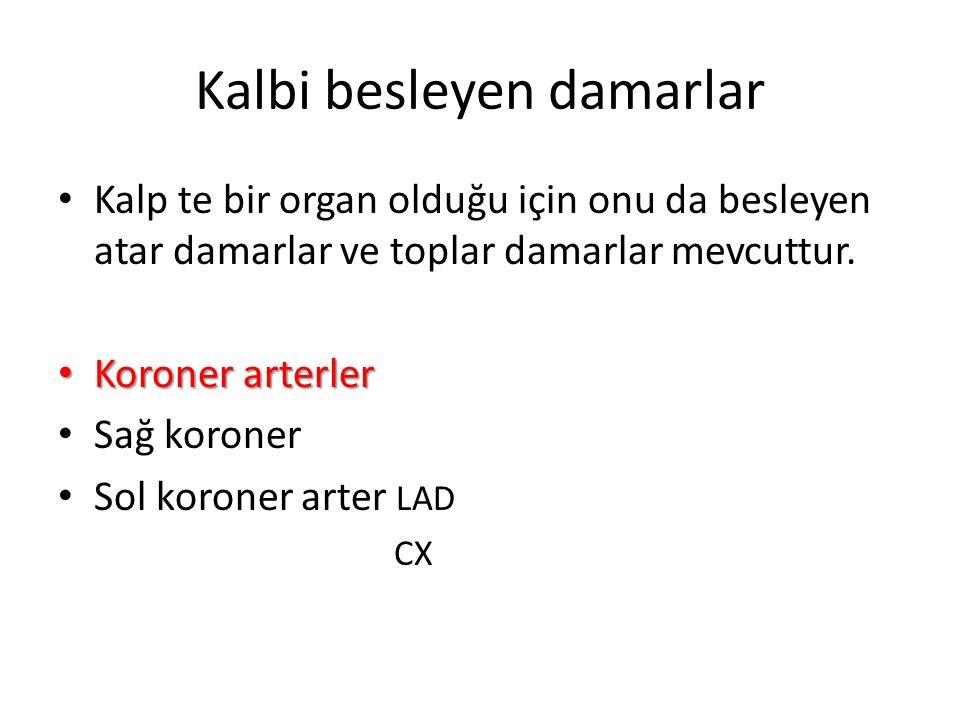 Torasik aort seyri
