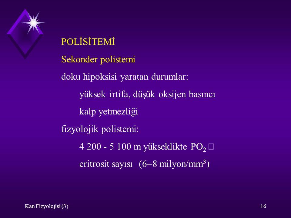 Kan Fizyolojisi (3)16 POLİSİTEMİ Sekonder polistemi doku hipoksisi yaratan durumlar: yüksek irtifa, düşük oksijen basıncı kalp yetmezliği fizyolojik polistemi: 4 200 - 5 100 m yükseklikte PO 2  eritrosit sayısı  milyon/mm 3 )