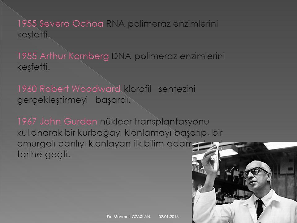 1955 Severo Ochoa RNA polimeraz enzimlerini keşfetti.