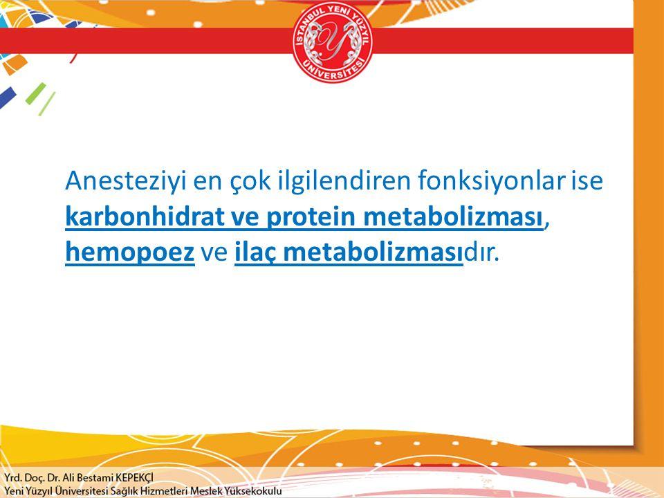 İlaçların Metabolizması  Birçok ilaç karaciğerde metabolize olur.