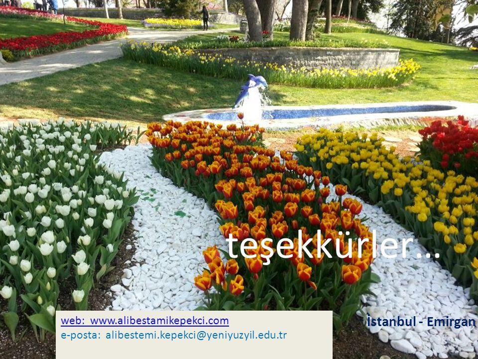 teşekkürler… İstanbul - Emirgan web: www.alibestamikepekci.com e-posta: alibestemi.kepekci@yeniyuzyil.edu.tr