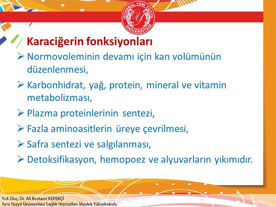 Karaciğerin fonksiyonları  Normovoleminin devamı için kan volümünün düzenlenmesi,  Karbonhidrat, yağ, protein, mineral ve vitamin metabolizması,  P