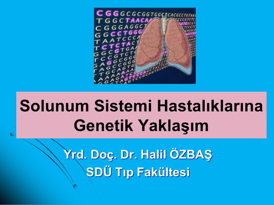 Solunum Sistemi Hastalıklarına Genetik Yaklaşım Yrd. Doç. Dr. Halil ÖZBAŞ SDÜ Tıp Fakültesi