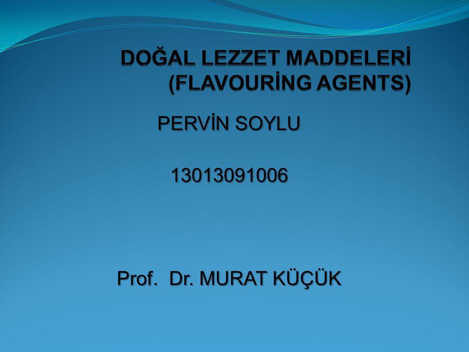 PERVİN SOYLU 13013091006 Prof. Dr. MURAT KÜÇÜK