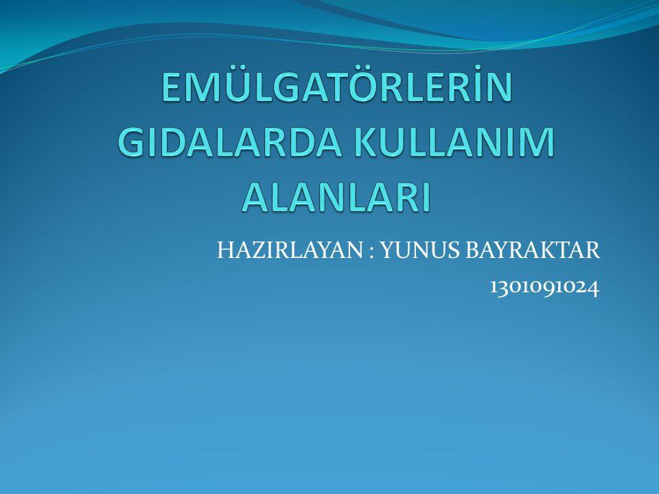HAZIRLAYAN : YUNUS BAYRAKTAR 1301091024