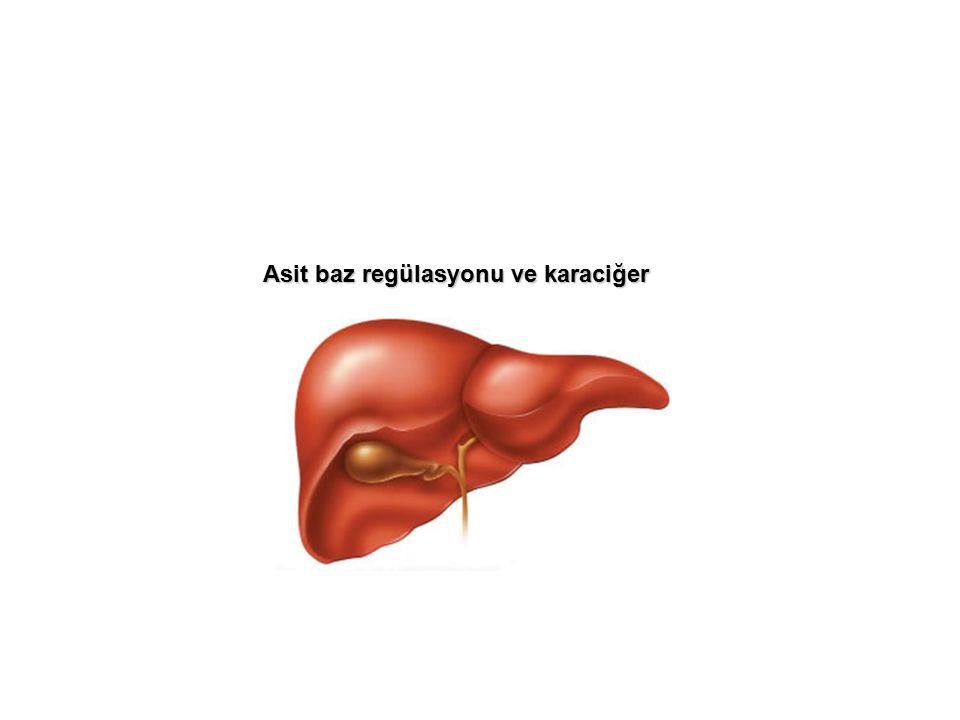 Asit baz regülasyonu ve karaciğer