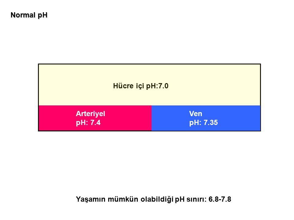Arteriyel pH: 7.4 Hücre içi pH:7.0 Ven pH: 7.35 Normal pH Yaşamın mümkün olabildiği pH sınırı: 6.8-7.8