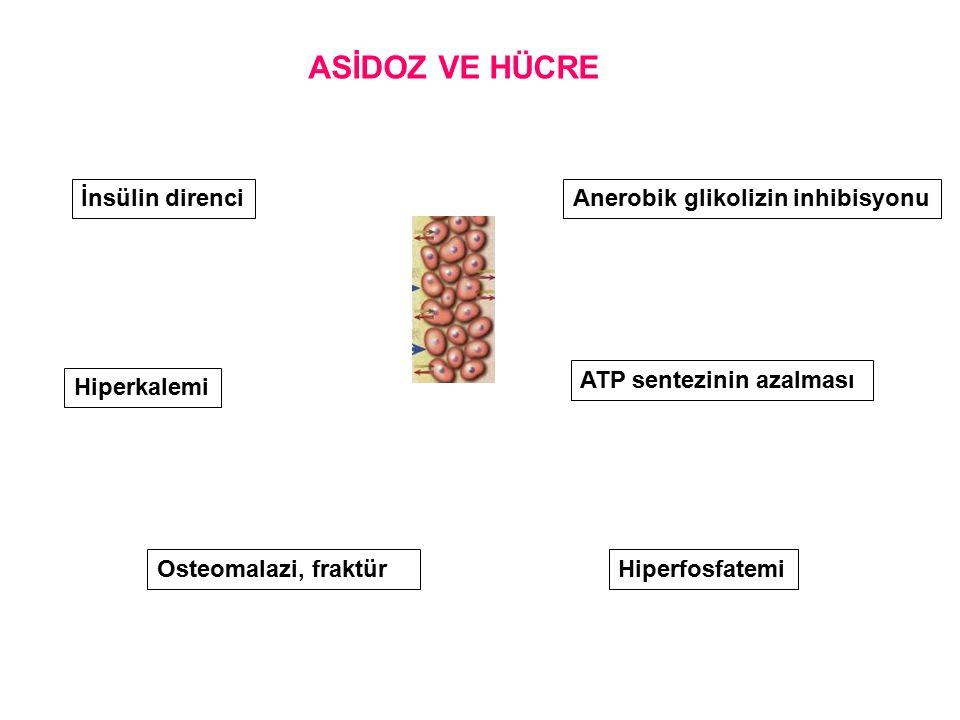 Osteomalazi, fraktür İnsülin direnciAnerobik glikolizin inhibisyonu ATP sentezinin azalması Hiperkalemi ASİDOZ VE HÜCRE Hiperfosfatemi