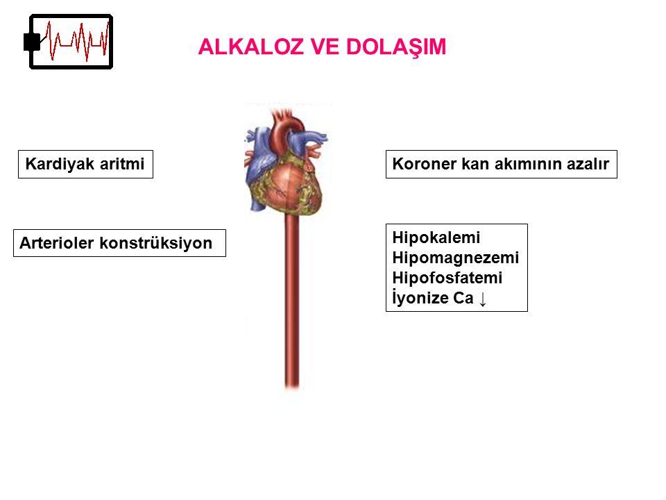 Arterioler konstrüksiyon Kardiyak aritmi ALKALOZ VE DOLAŞIM Koroner kan akımının azalır Hipokalemi Hipomagnezemi Hipofosfatemi İyonize Ca ↓