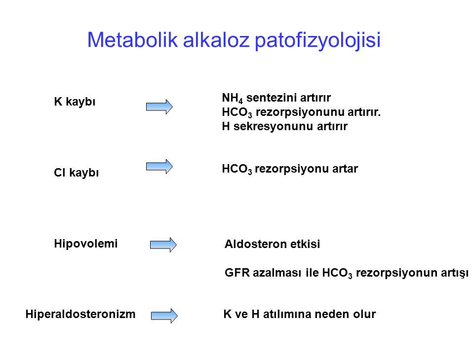 Metabolik alkaloz patofizyolojisi K kaybı Cl kaybı Hipovolemi NH 4 sentezini artırır HCO 3 rezorpsiyonunu artırır. H sekresyonunu artırır HCO 3 rezorp