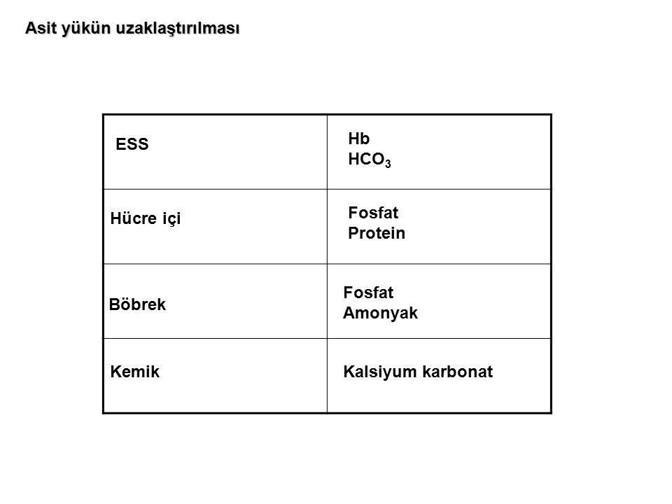 ESS Hb HCO 3 Hücre içi Fosfat Protein Böbrek Fosfat Amonyak KemikKalsiyum karbonat Asit yükün uzaklaştırılması