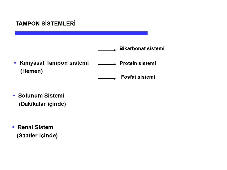  Kimyasal Tampon sistemi (Hemen) Bikarbonat sistemi Protein sistemi Fosfat sistemi  Solunum Sistemi (Dakikalar içinde)  Renal Sistem (Saatler içind