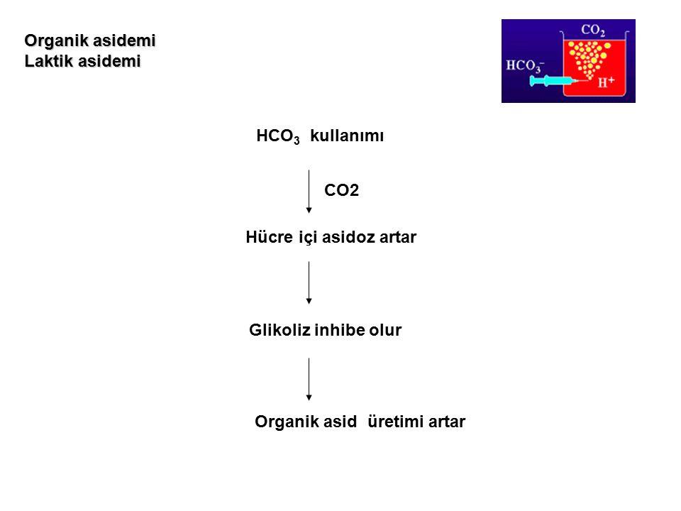 HCO 3 kullanımı Hücre içi asidoz artar Glikoliz inhibe olur Organik asid üretimi artar Organik asidemi Laktik asidemi CO2