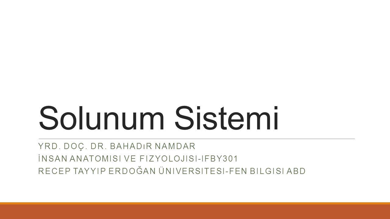 Solunum Sistemi YRD. DOÇ. DR.