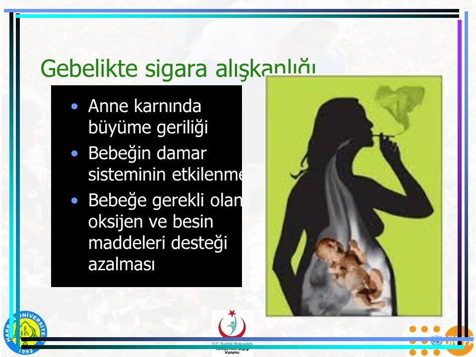Gebelikte sigara alışkanlığı Anne karnında büyüme geriliği Bebeğin damar sisteminin etkilenmesi Bebeğe gerekli olan oksijen ve besin maddeleri desteği